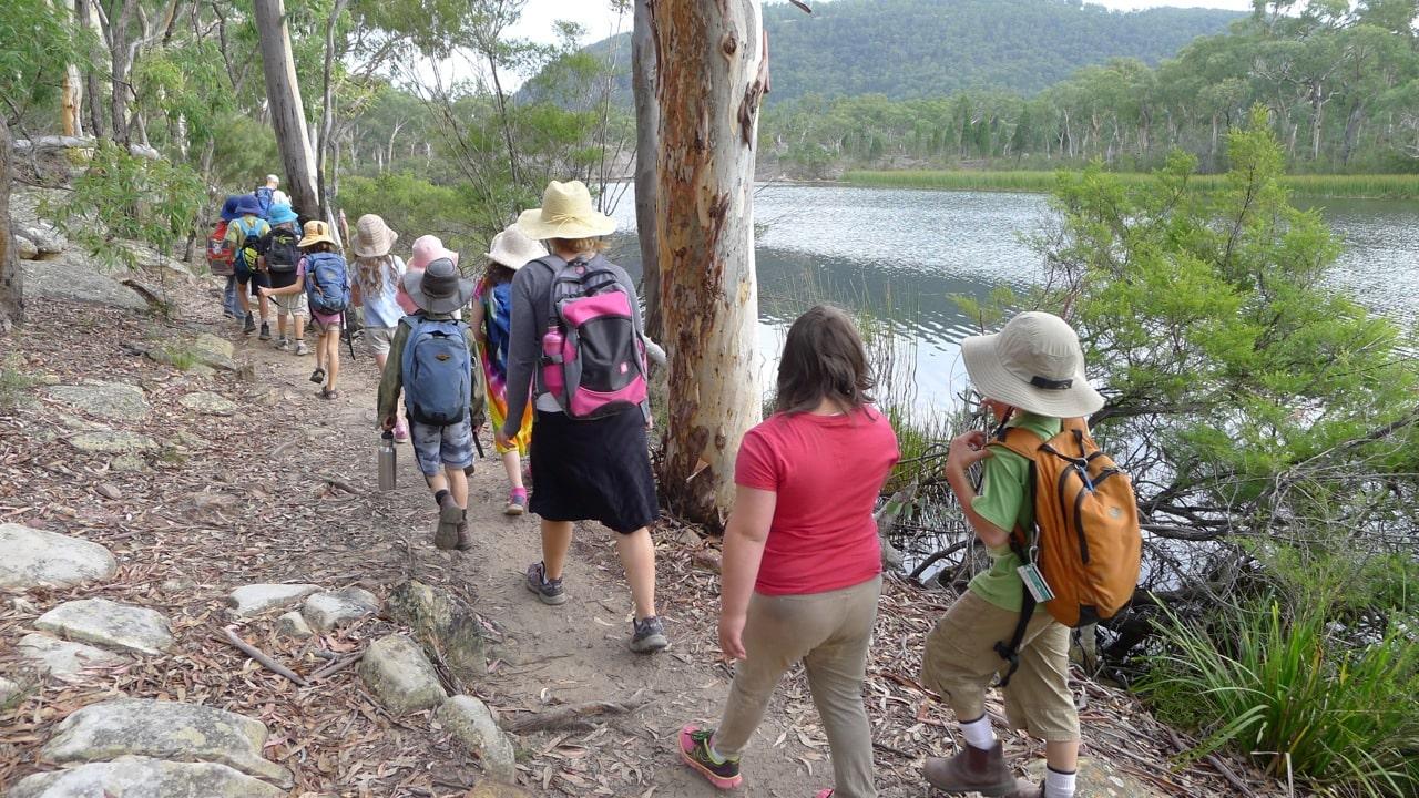 Bushwalking by the swamp