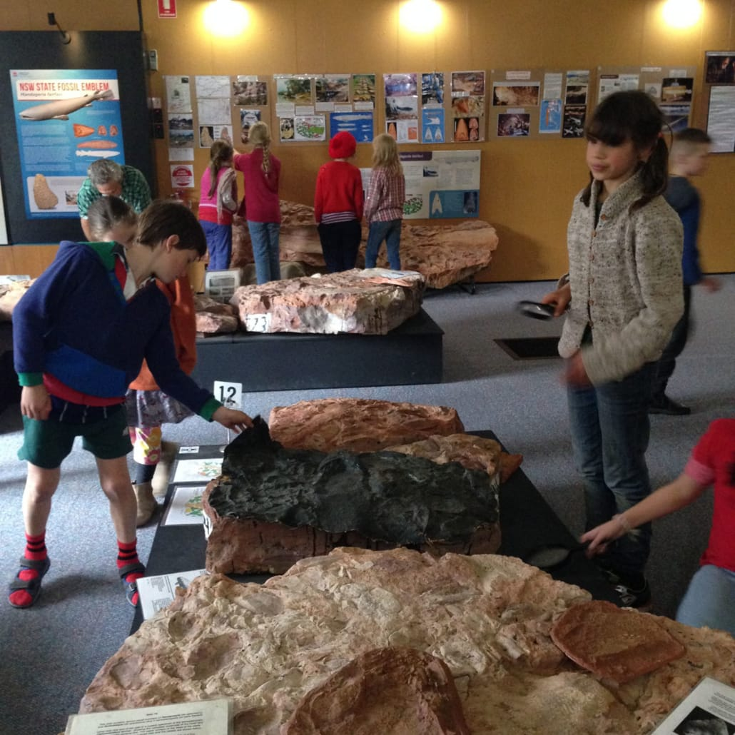 Class 4- 5 camp Age of Fishes Museum