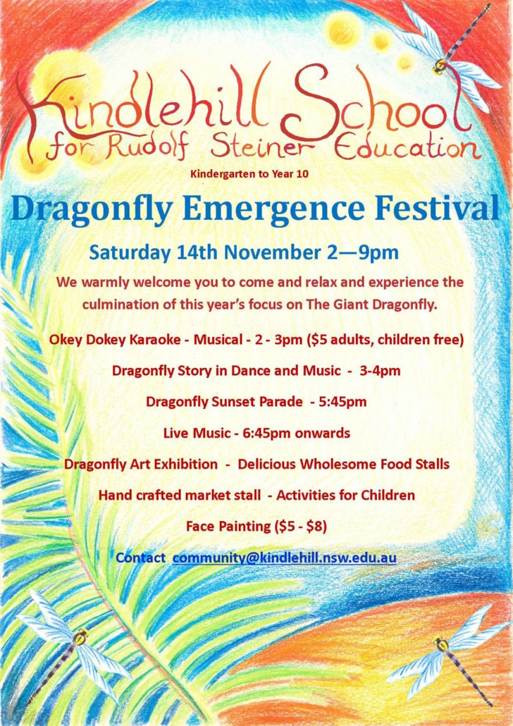 2015 Emergence Festival poster with programme